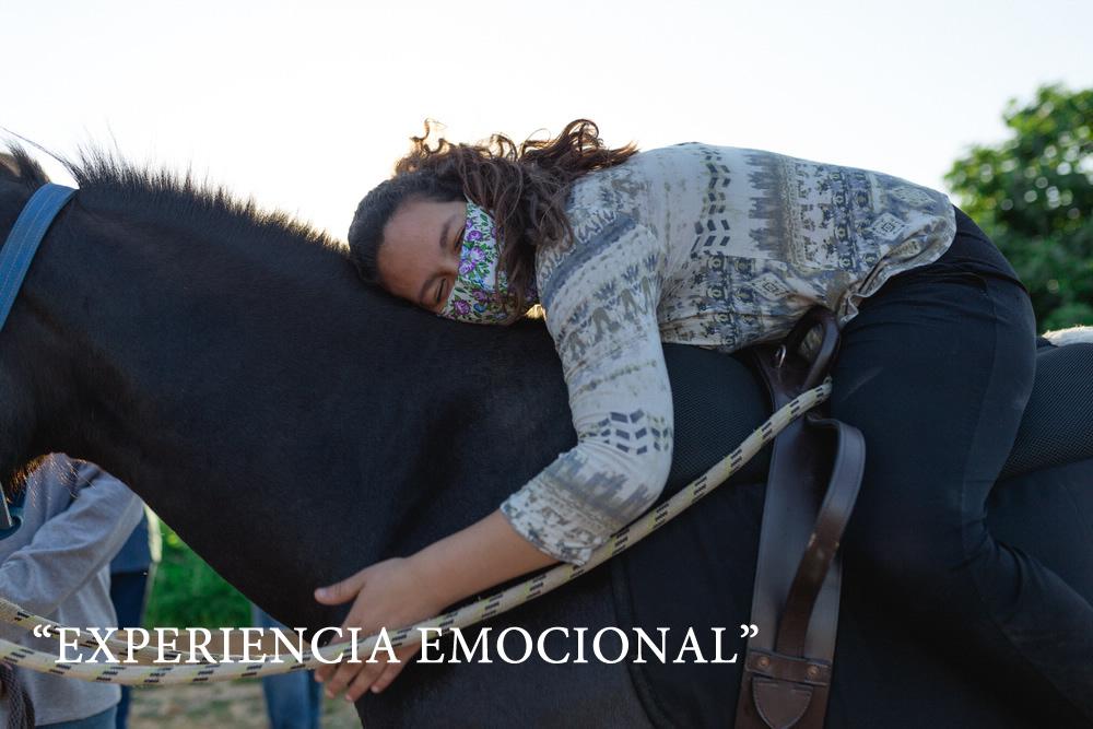 Carruselhoy3EquinoColchagua-294